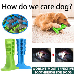 DogSmart™ World's Most Effective Toothbrush for Dogs