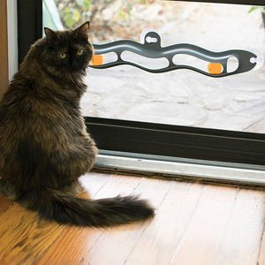 Window Mounted Track Ball Toy For Cats