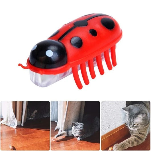 Robot Bug Toy For Cats (2pcs)