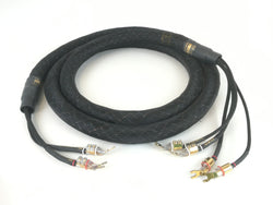 Kimber Kable BiFocal X Bi-Wire Speaker Cable, 10'