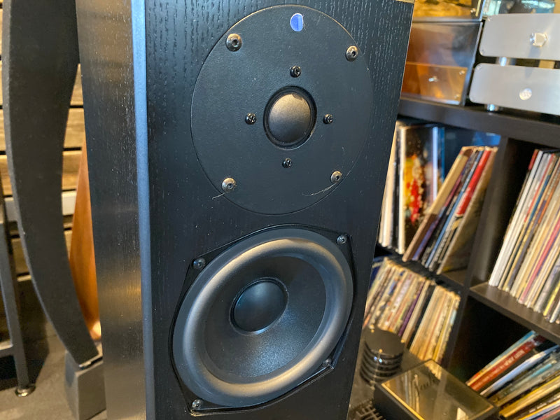 Totem Staff Floorstanding Speakers with Mite-T Center