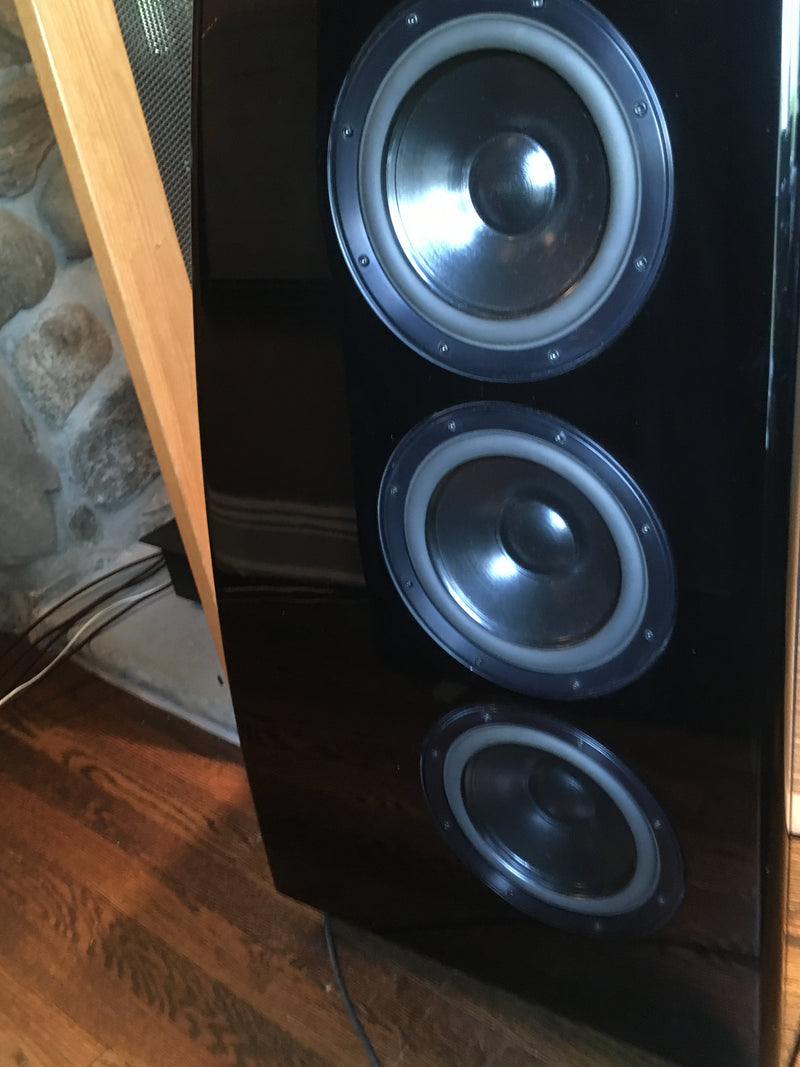 Meridian DSP8000 Powered Speakers