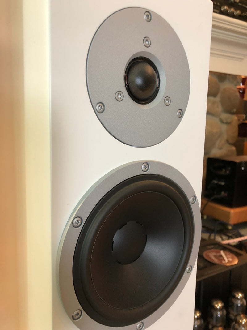 Dynaudio Xeo 6 Powered Speakers in White, Gorgeous!