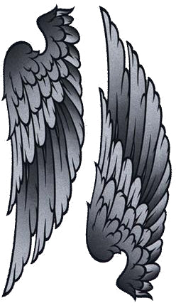 Glitter Wings Decal