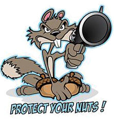 Rude & Crude Decal: Protect Your Nuts