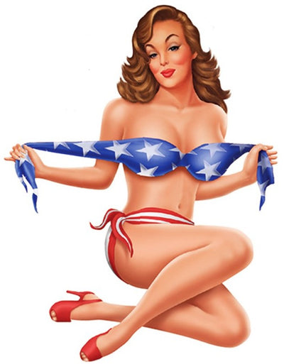 USA Nose Art Pin Up Girl Sticker