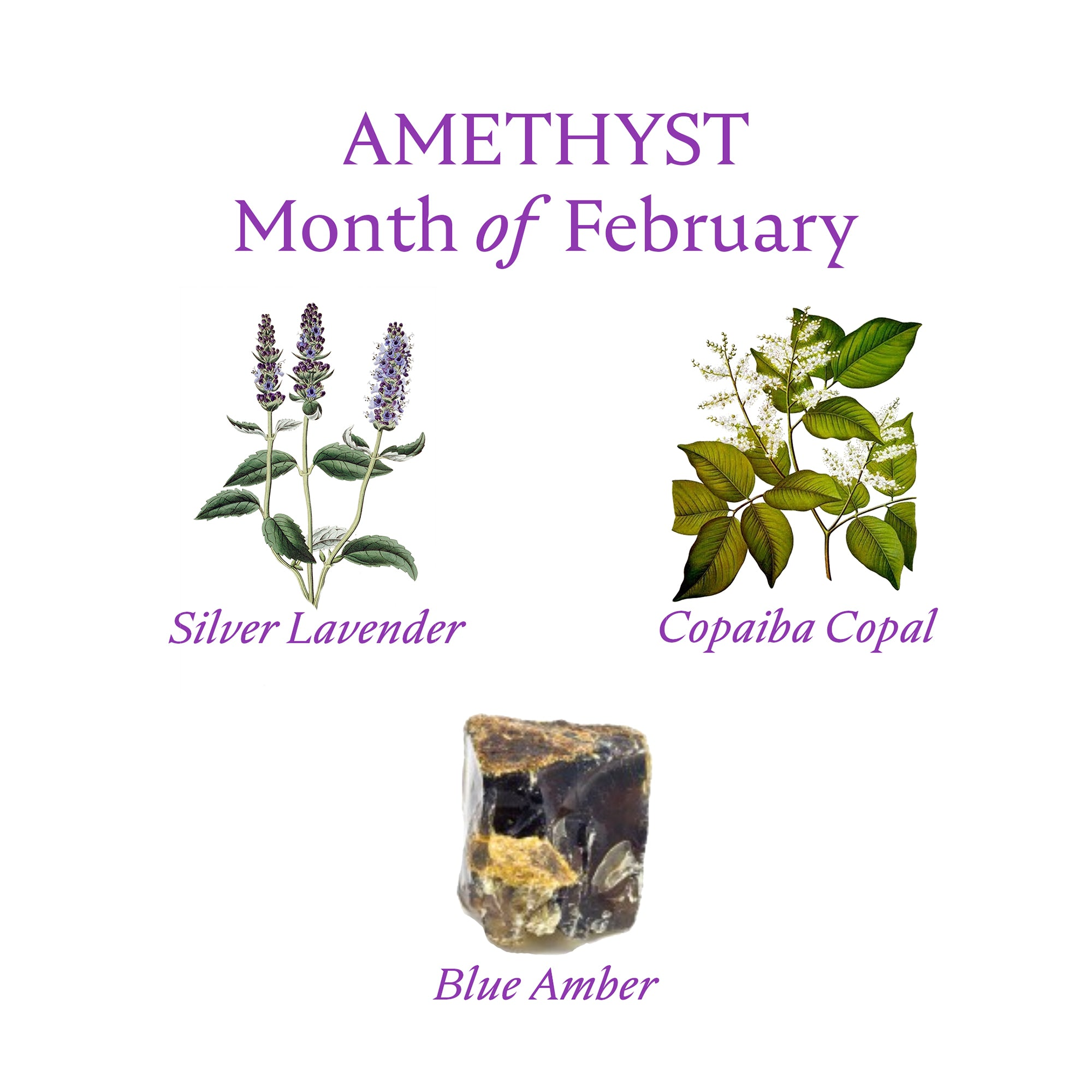 AMETHYST PERFUME OIL | February - Birthstone Scents