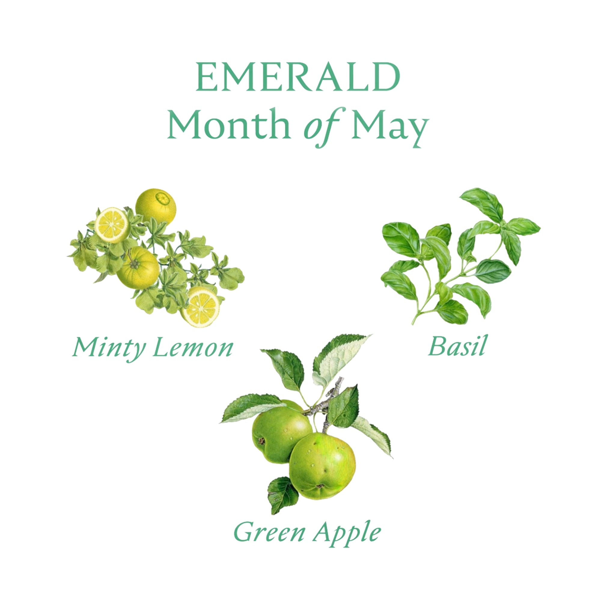 EMERALD CANDLE | May - Birthstone Scents