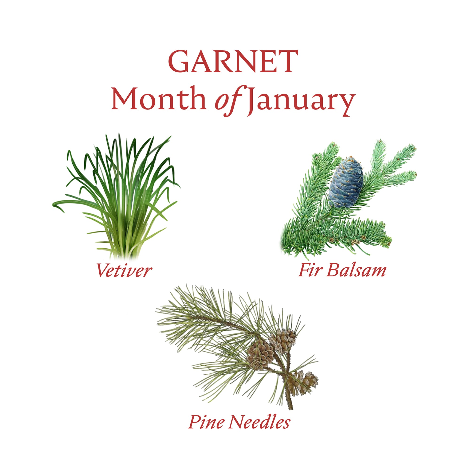GARNET CANDLE | January - Birthstone Scents