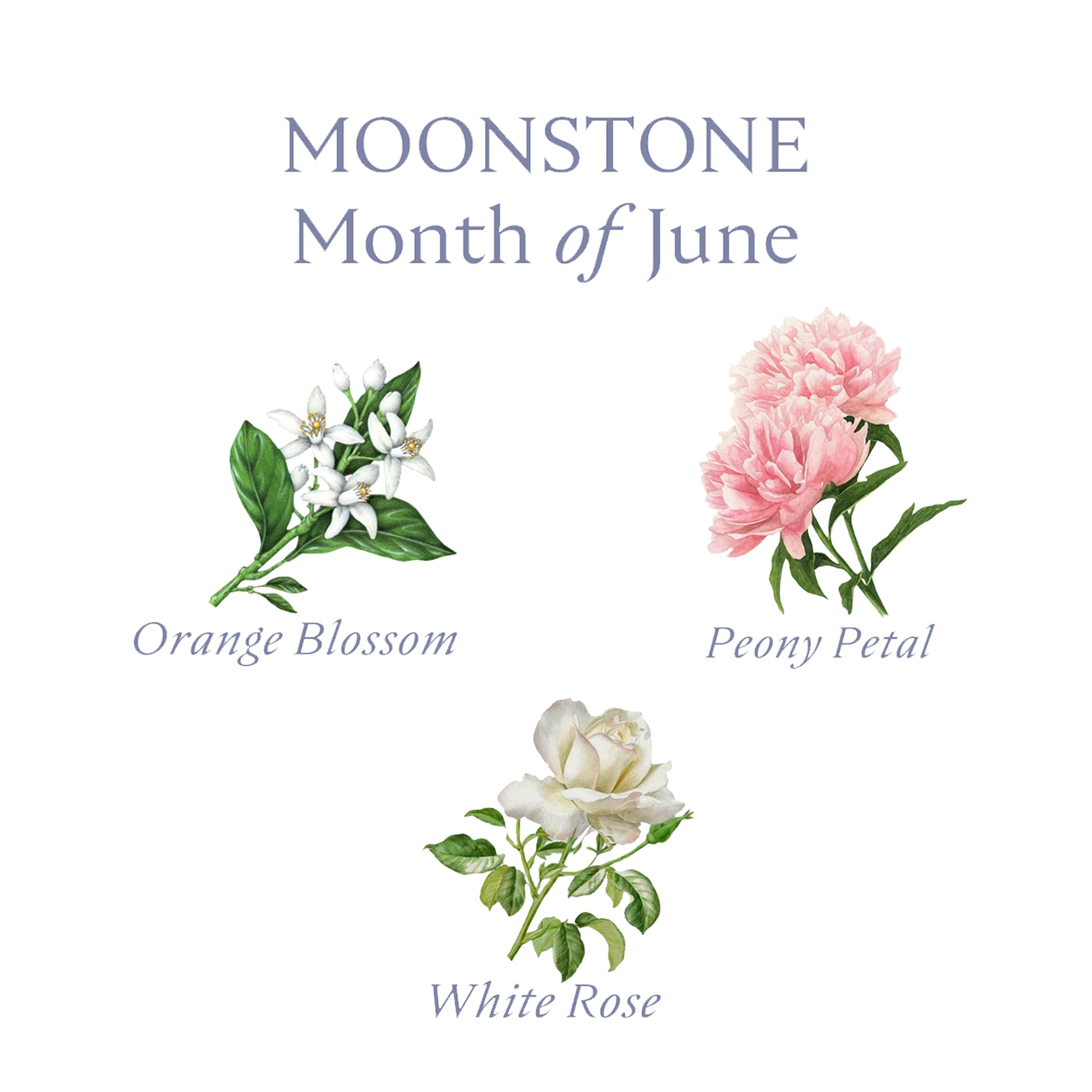 MOONSTONE CANDLE | June - Birthstone Scents