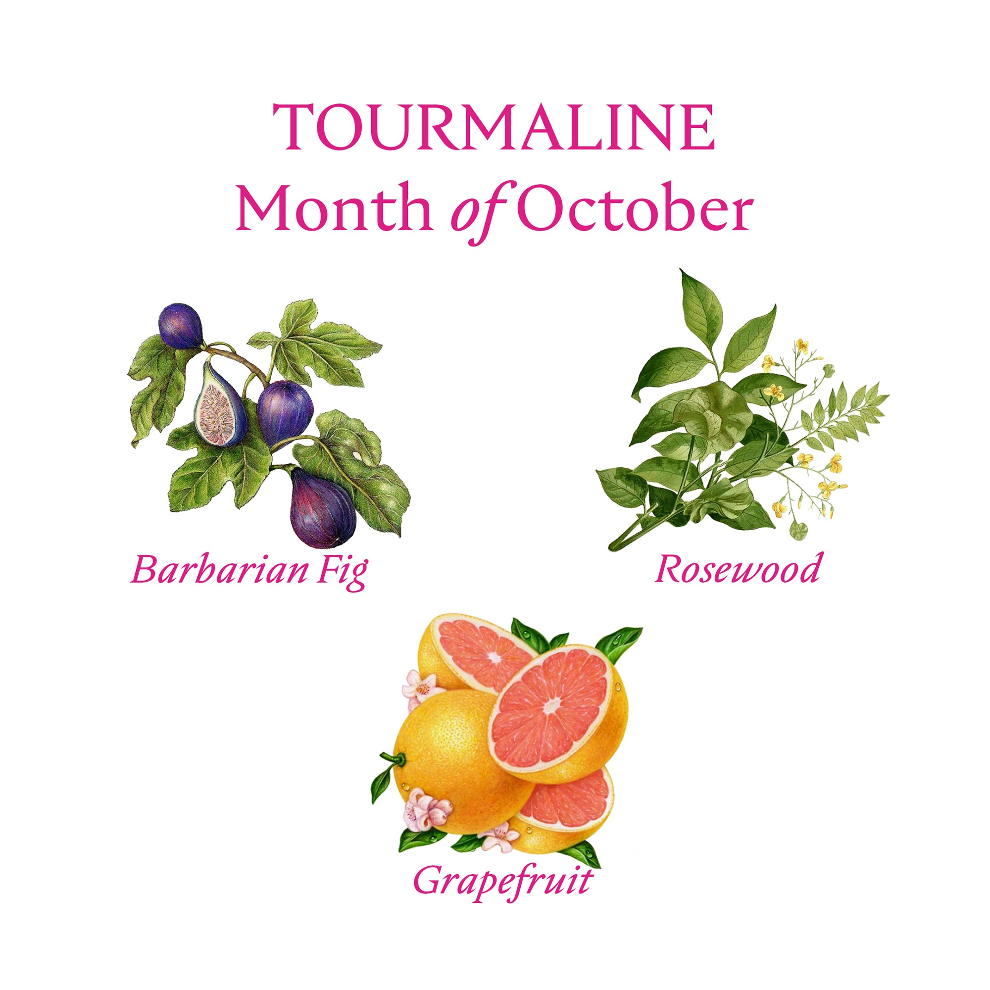 TOURMALINE CANDLE | October - Birthstone Scents