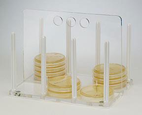 Bel-Art SP Scienceware 100mm Petri Dish Rack