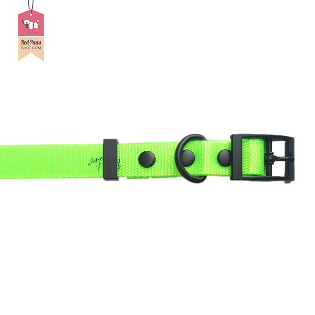 Puppy Love Neon Dog Collar - Small