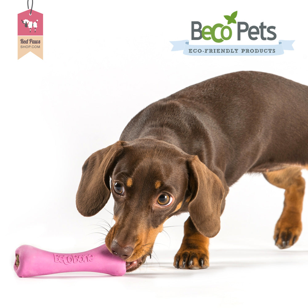 Beco Pets Eco Friendly Bone Dog Toy - Small