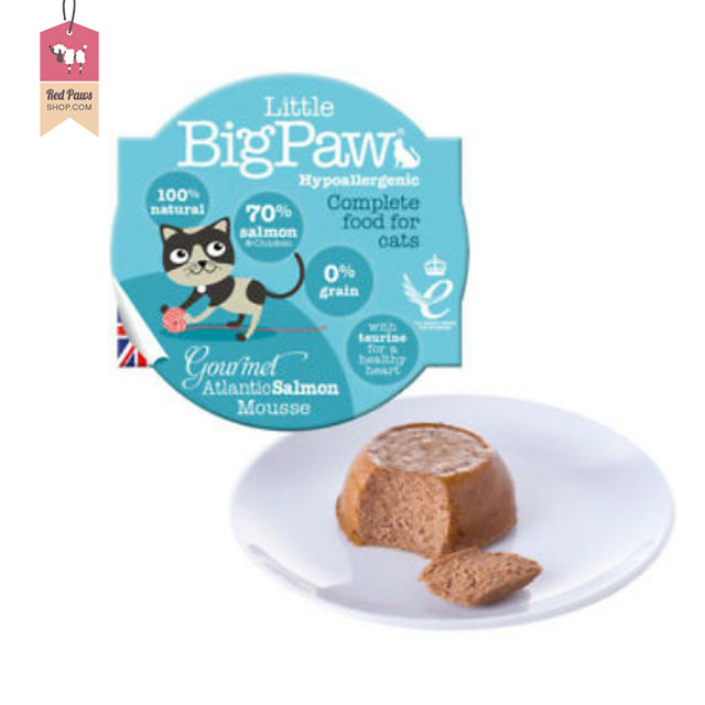 Little Big Paw - Atlantic Salmon Cat Food – 85 Gms