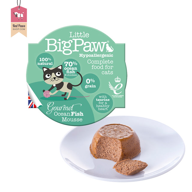 Big Little Paw – Ocean Fish Cat Food – 85 Gms