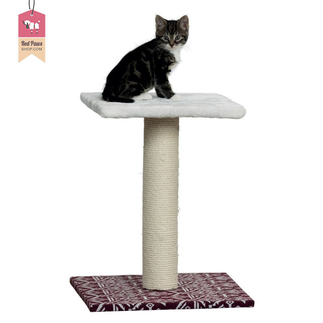 Trixie Carlotta Scratching Post