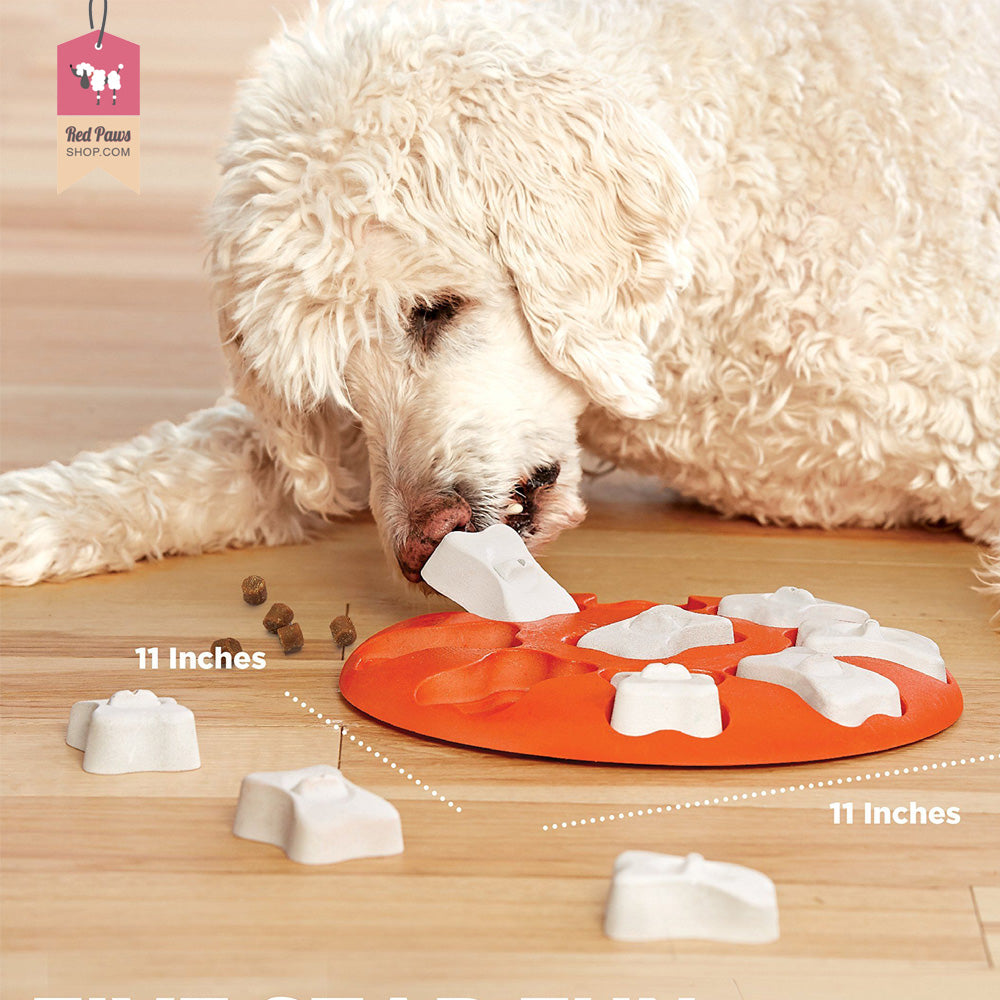 Outward Hound Dog Puzzle Smart