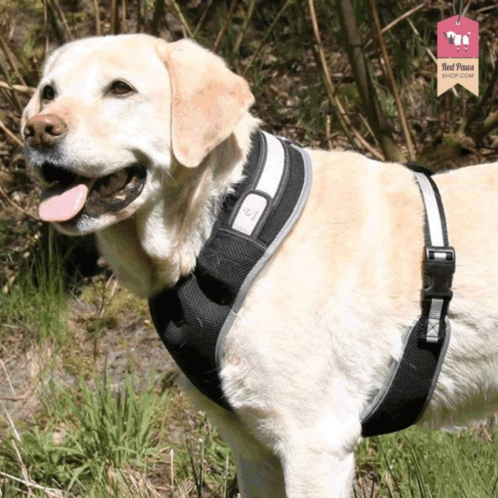 Trixie Flash Soft Harness X-Small - Small