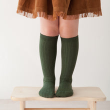 Ribbed Knee Socks, Amazonia