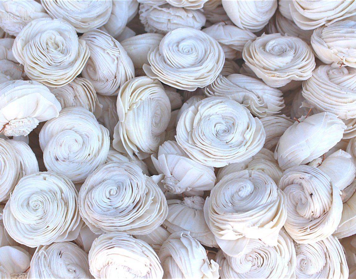 50 Sola Shell Flowers Bundle - Sola Wood Flowers