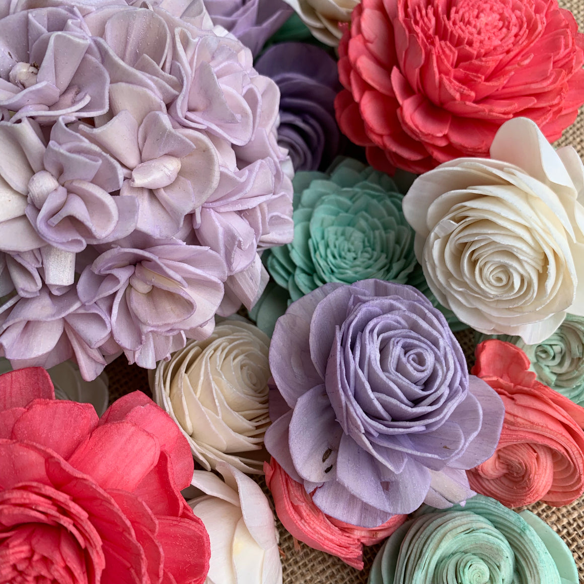 Blush Bloom Assortment