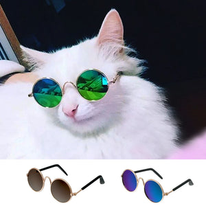 Grooming Fashion Cat Sunglasses