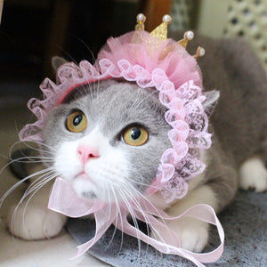 Crown Cat Hat