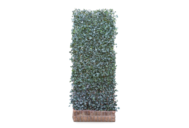 MOBILANE GREEN SCREEN 120CM X 300CM