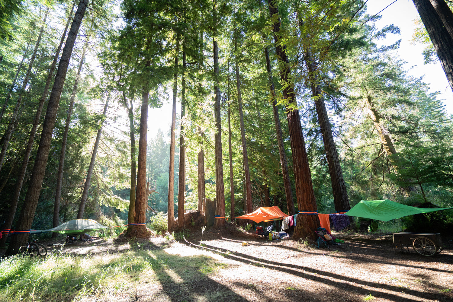 Top Places to Camp in Europe with a Tree Tent this Summer