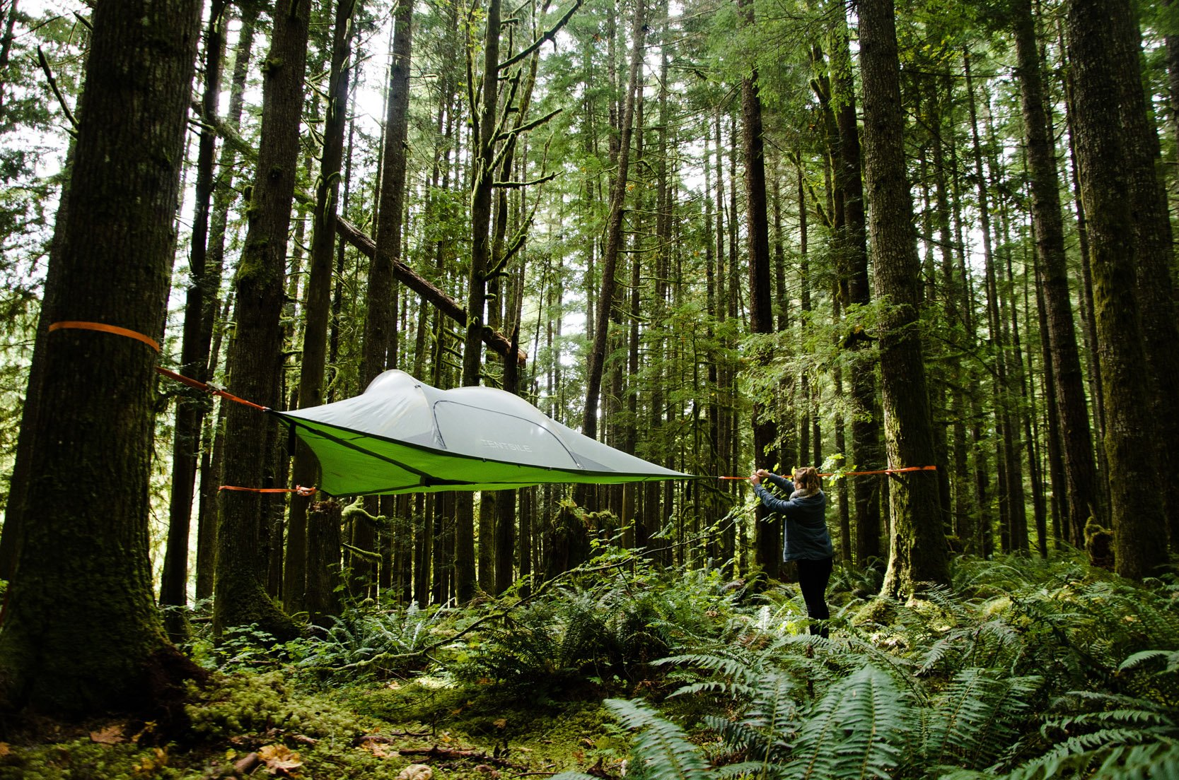 Lessons From A Small Business With Big Plans: Tentsile 2017