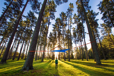 Plant Trees With Tentsile