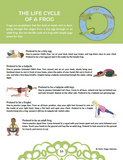 Yoga Ideas for Science Class