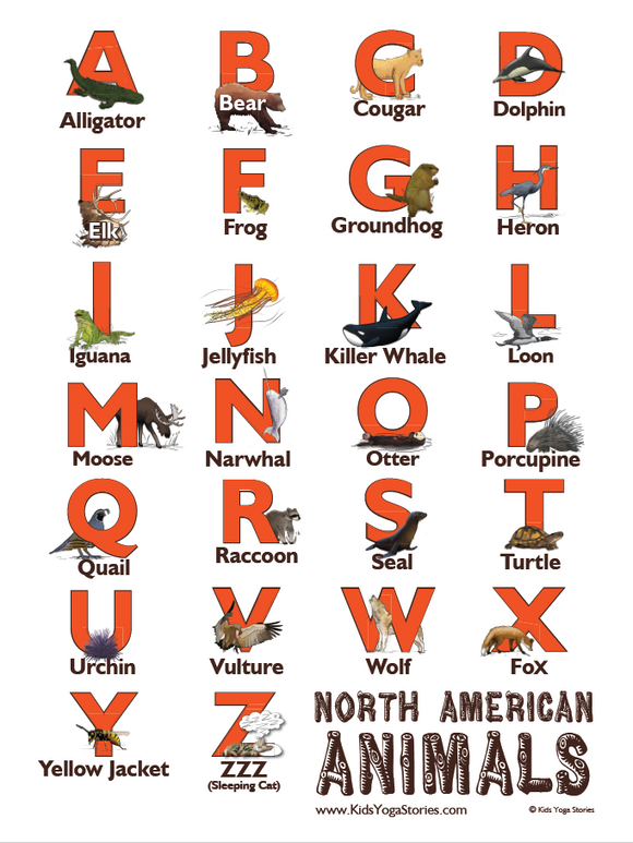 North American Animals Alphabet Poster
