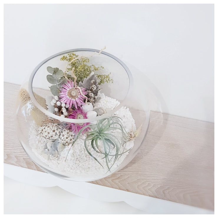 terrAIRium glass garden fish bowl