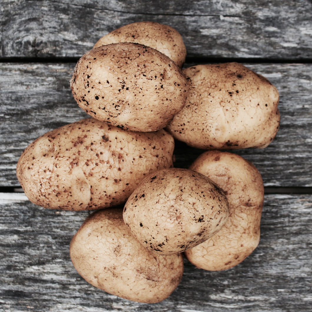 Organic Potatoes Ontario