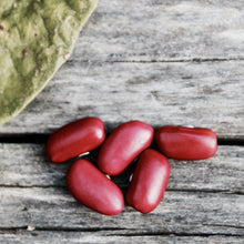 Certified Organic Red Kidney Beans