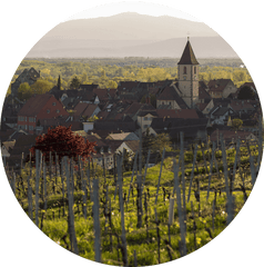 vineyard church germany wine