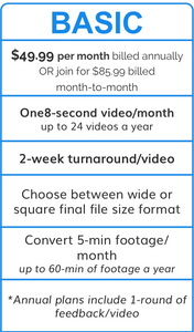 Video Lab Basic - Annual Plan
