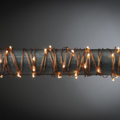 10ft Indoor/Outdoor LED Light String