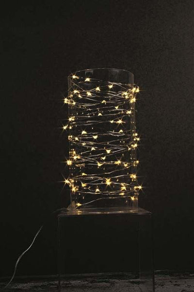 20ft Indoor/Outdoor Warm White LED String