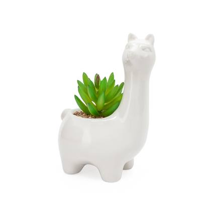 Animal Garden Ceramic Potted Faux Succulent