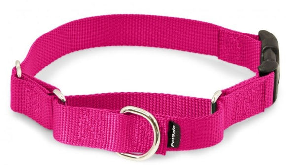 PetSafe Premier Martingale Raspberry Quick Snap Pet Collar