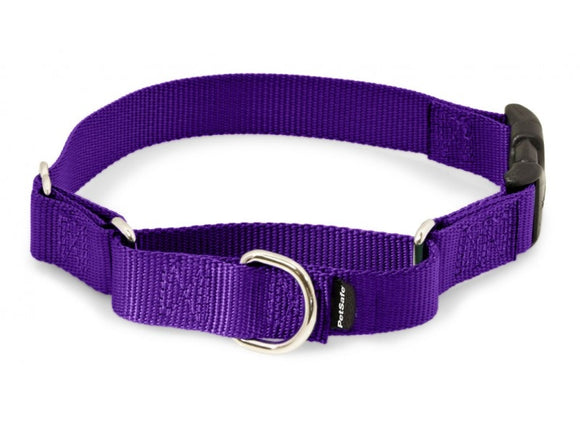 PetSafe Premier Martingale Deep Purple Quick Snap Pet Collar