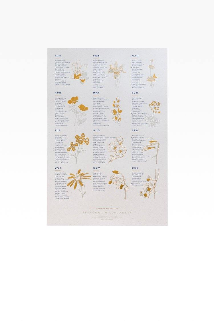 Seasonal Wildflower Calendar
