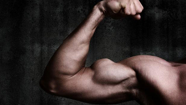 Alpha Male Potentiates Muscle Growth - A unique way to use T boosters to get even better results from your workouts. Check it out.