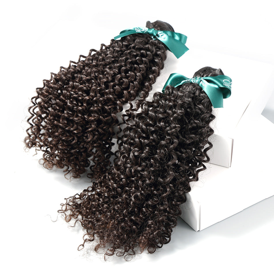 Brazilian Afro Kinky Curly Hair Bundles 2pcslot Natural Black Curly