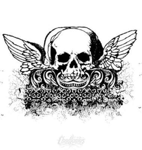 Cherub Winged Skull Vector Chadlonius