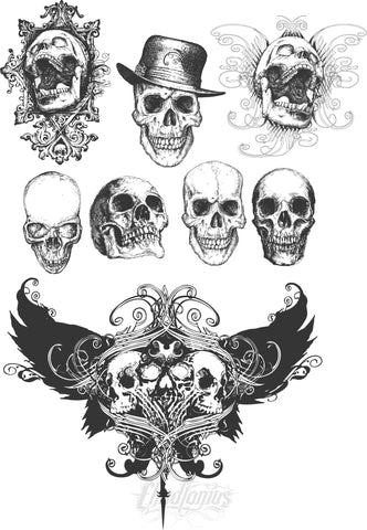 Hand Drawn Skull Vectors Set Vector Chadlonius