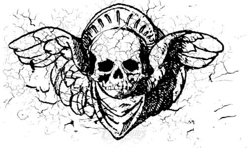 Winged Skull Vector Vector Chadlonius